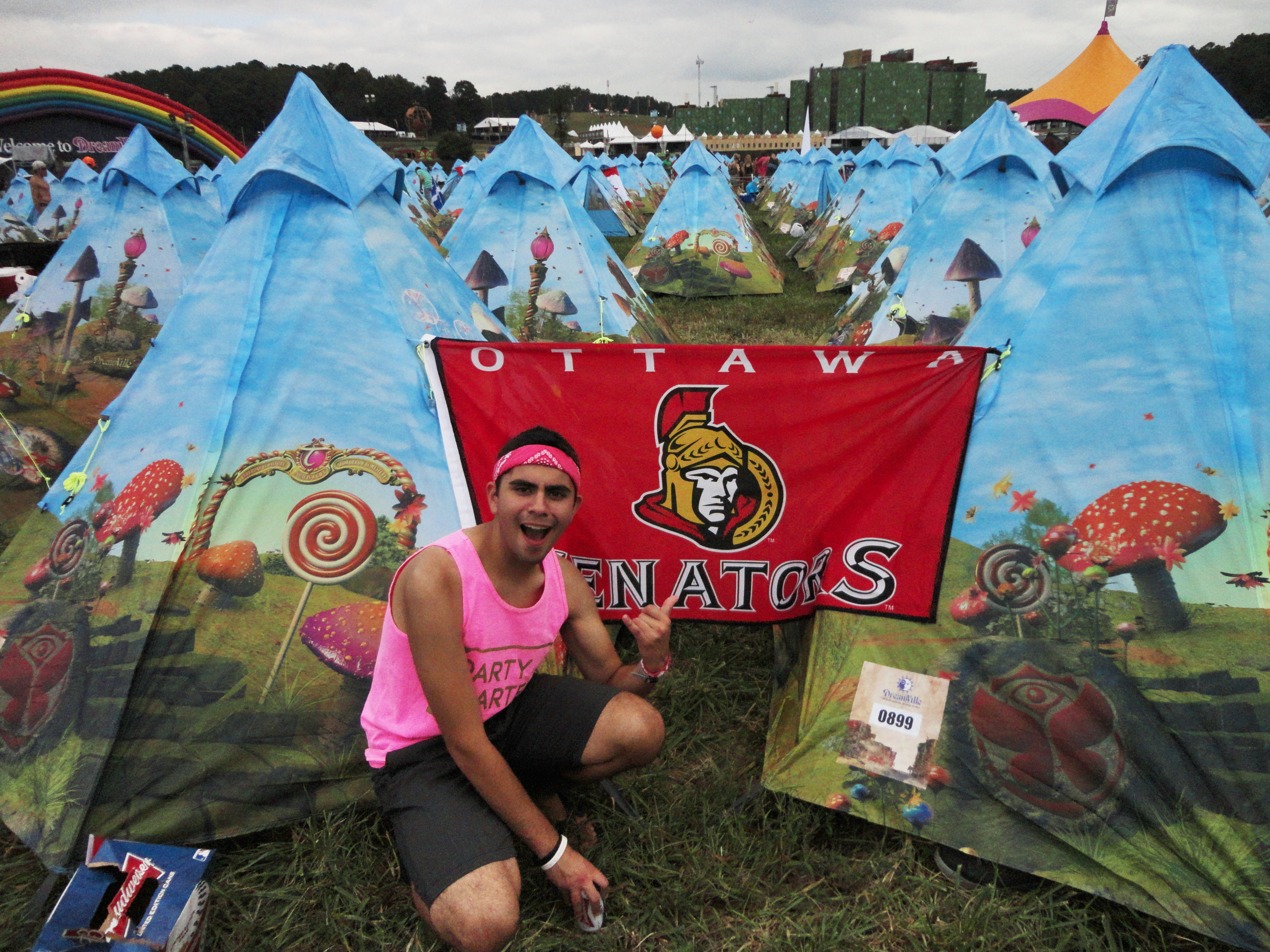 Tomorrowworld 2013 Discover The Madness A Journal Of